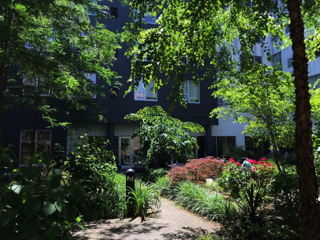 The award winning gardens of the John C. Anderson Apartments, kept up by the residents.